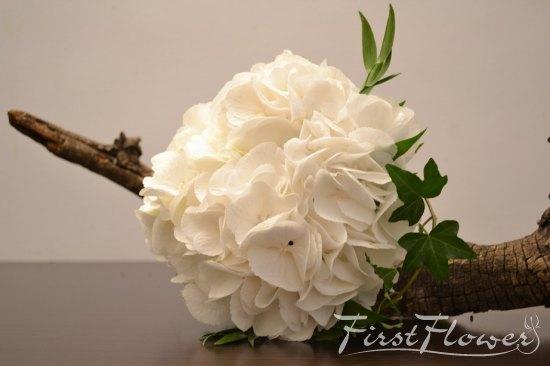 Buchet De Mireasa Alb Cu Iedera Verde Si Hortensie Alba First Flower